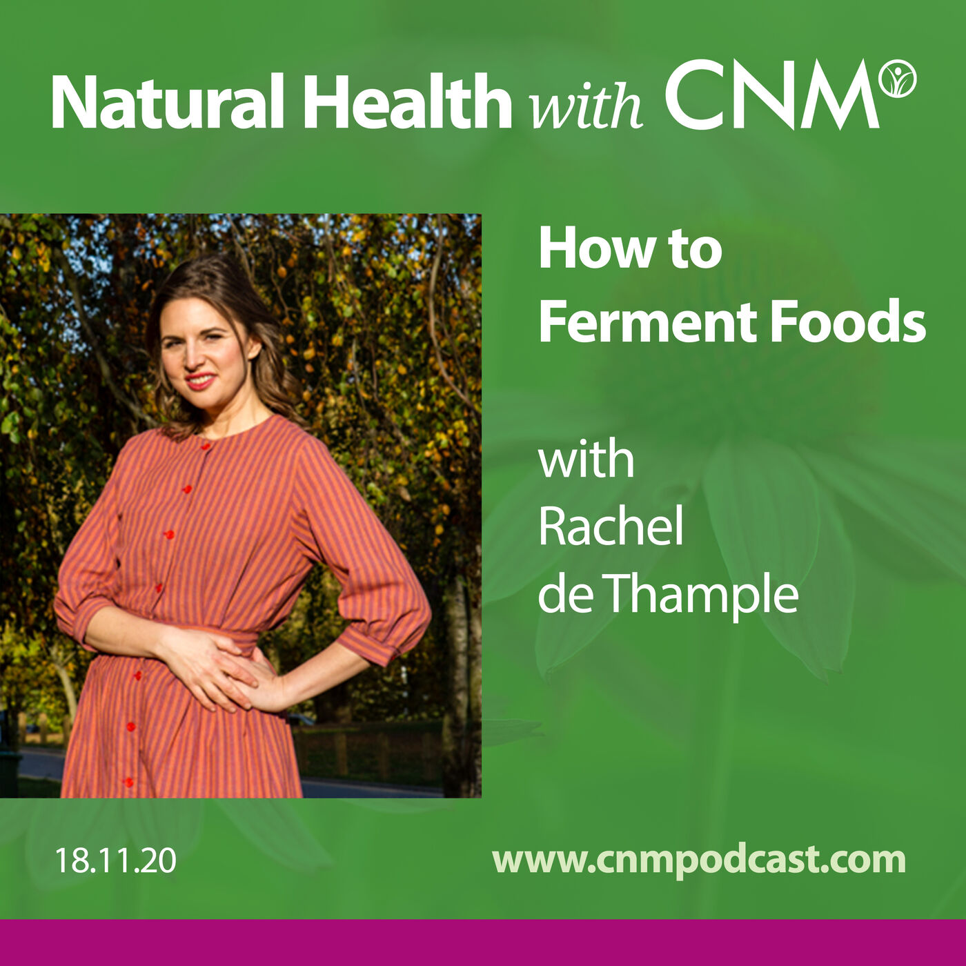 How to Ferment Foods with Rachel de Thample