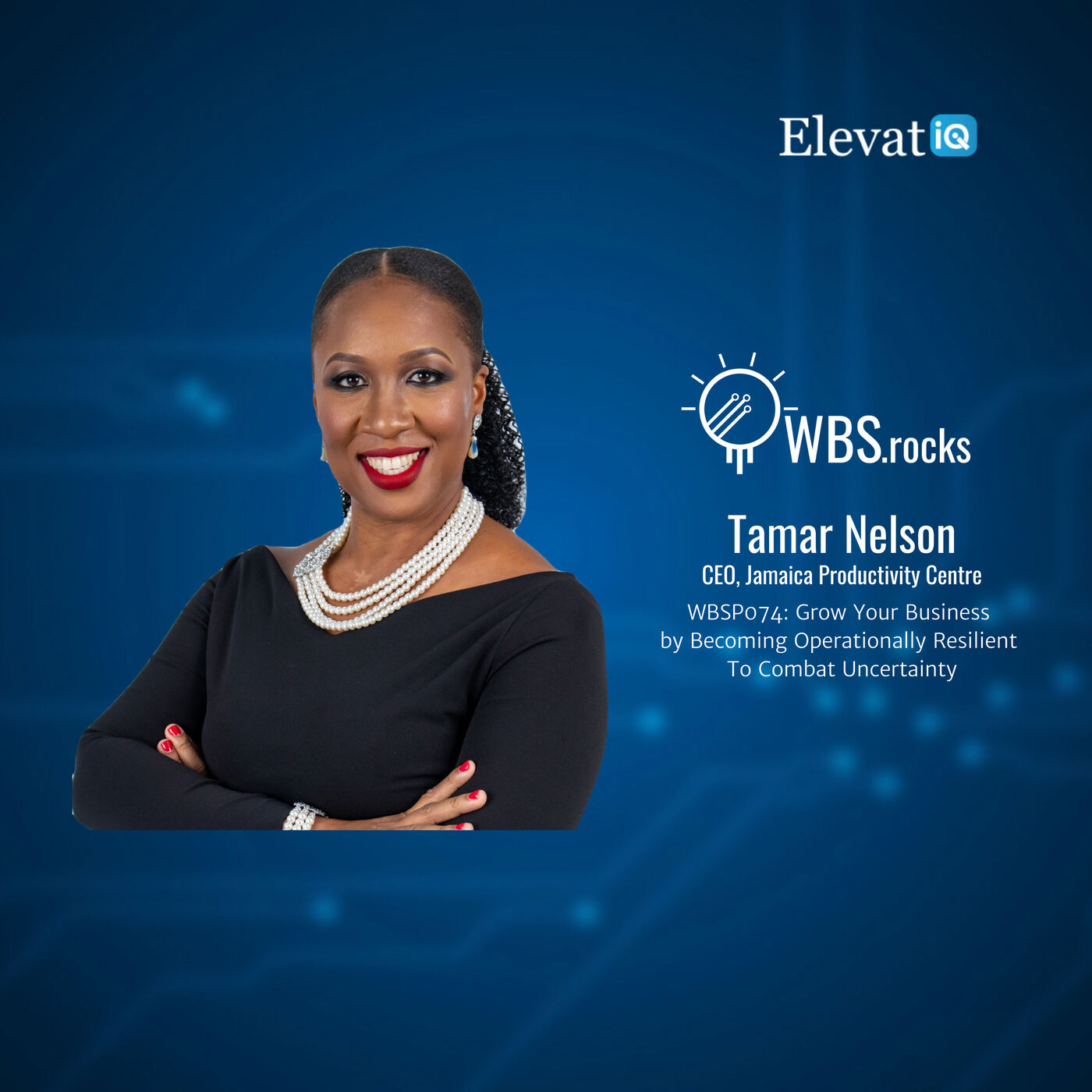WBSP074: Grow Your Business by Becoming Operationally Resilient To Combat Uncertainty w/ Tamar Nelson