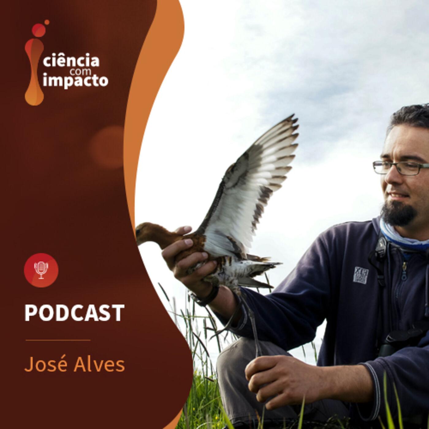 Podcast T1E7: José Alves - Aves Migradoras. Entre o Ártico e África