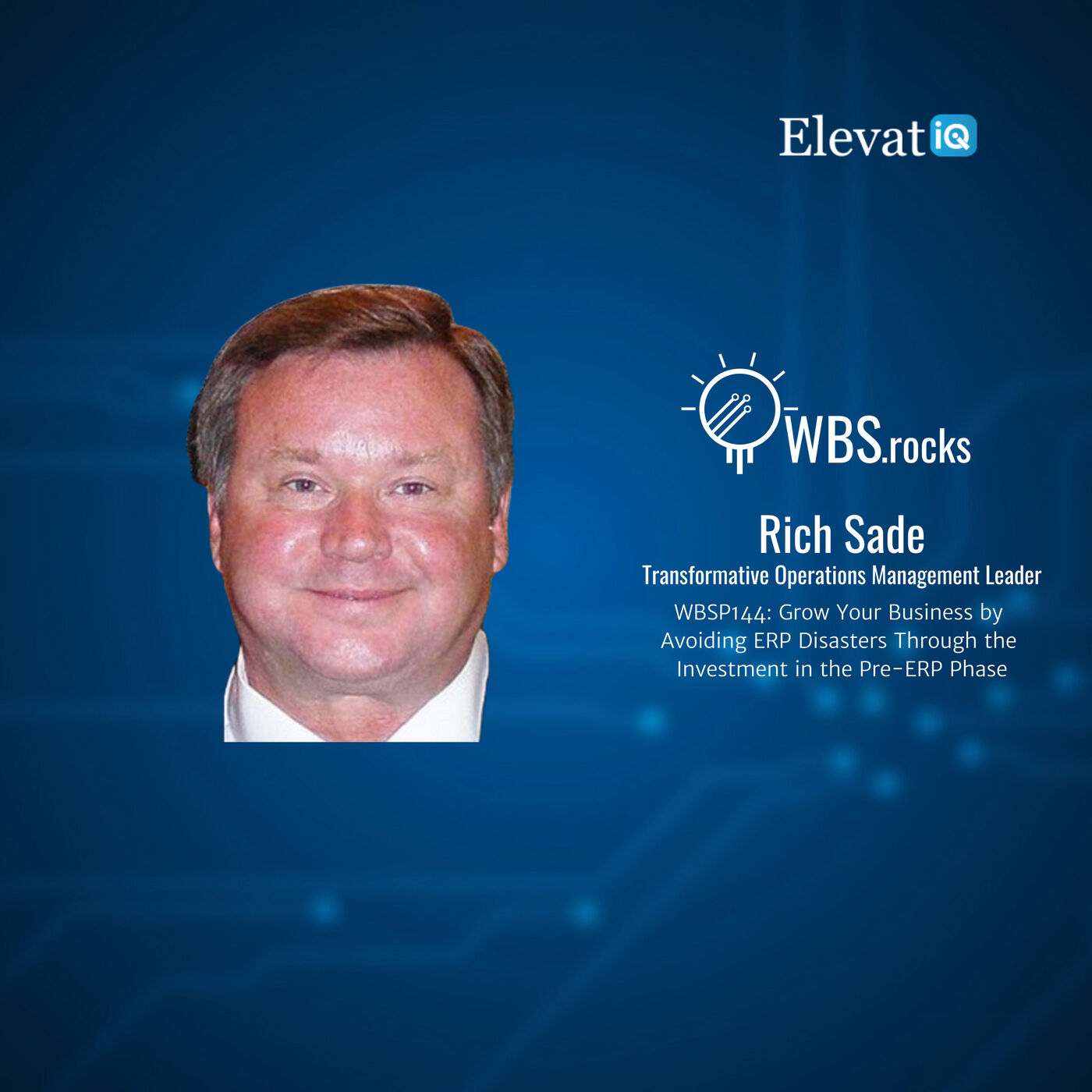 WBSP144: Grow Your Business by Avoiding ERP Disasters Through the Investment in the Pre-ERP Phase w/ Rich Sade