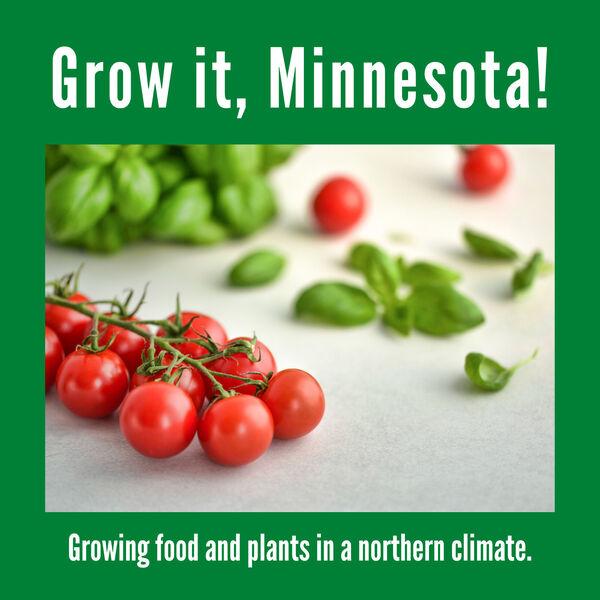 Grow it, Minnesota Podcast Artwork Image