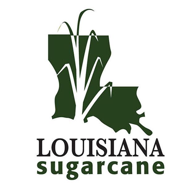 Louisiana Sugarcane News  Podcast Artwork Image