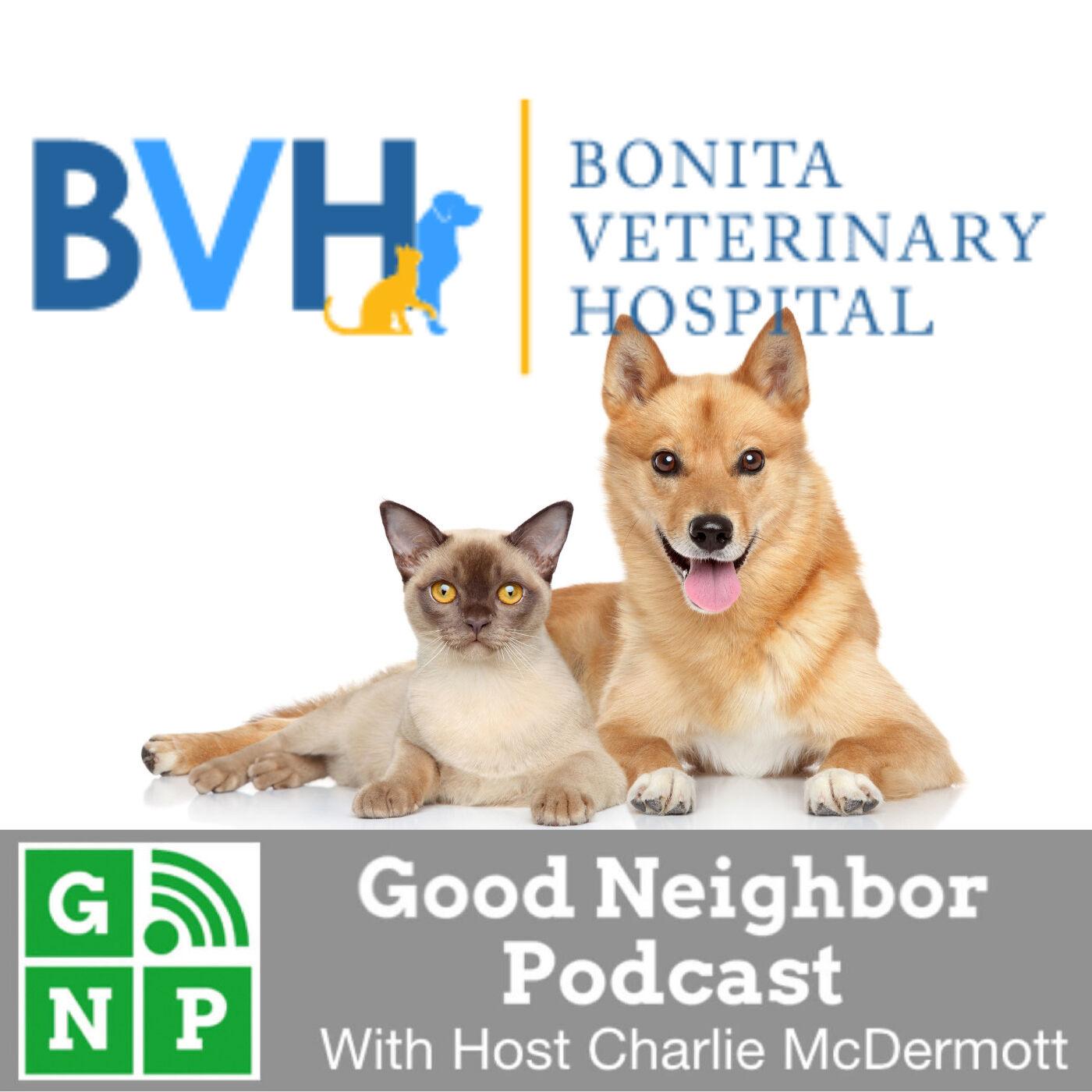 EP #498: Bonita Veterinary Hospital with Dr. Lauren Dietter
