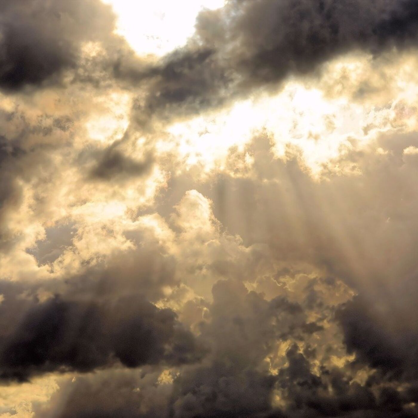 Book of Remembrance Chapter 3:1-11: Dividing the Light from the Darkness