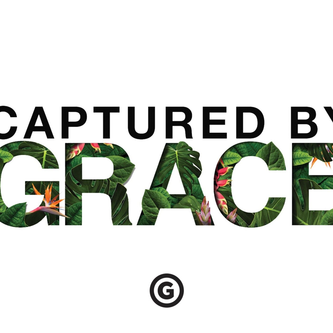 Captured By Grace Series:  The Journey Out of the Jungle