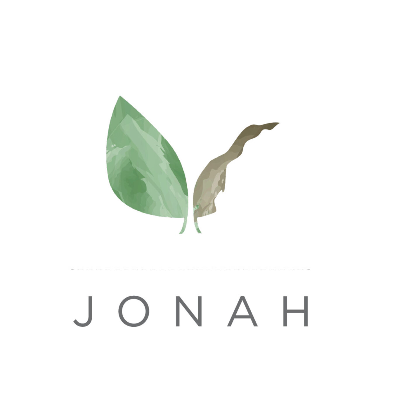 In Therapy with Jonah (Jonah, Part IV)