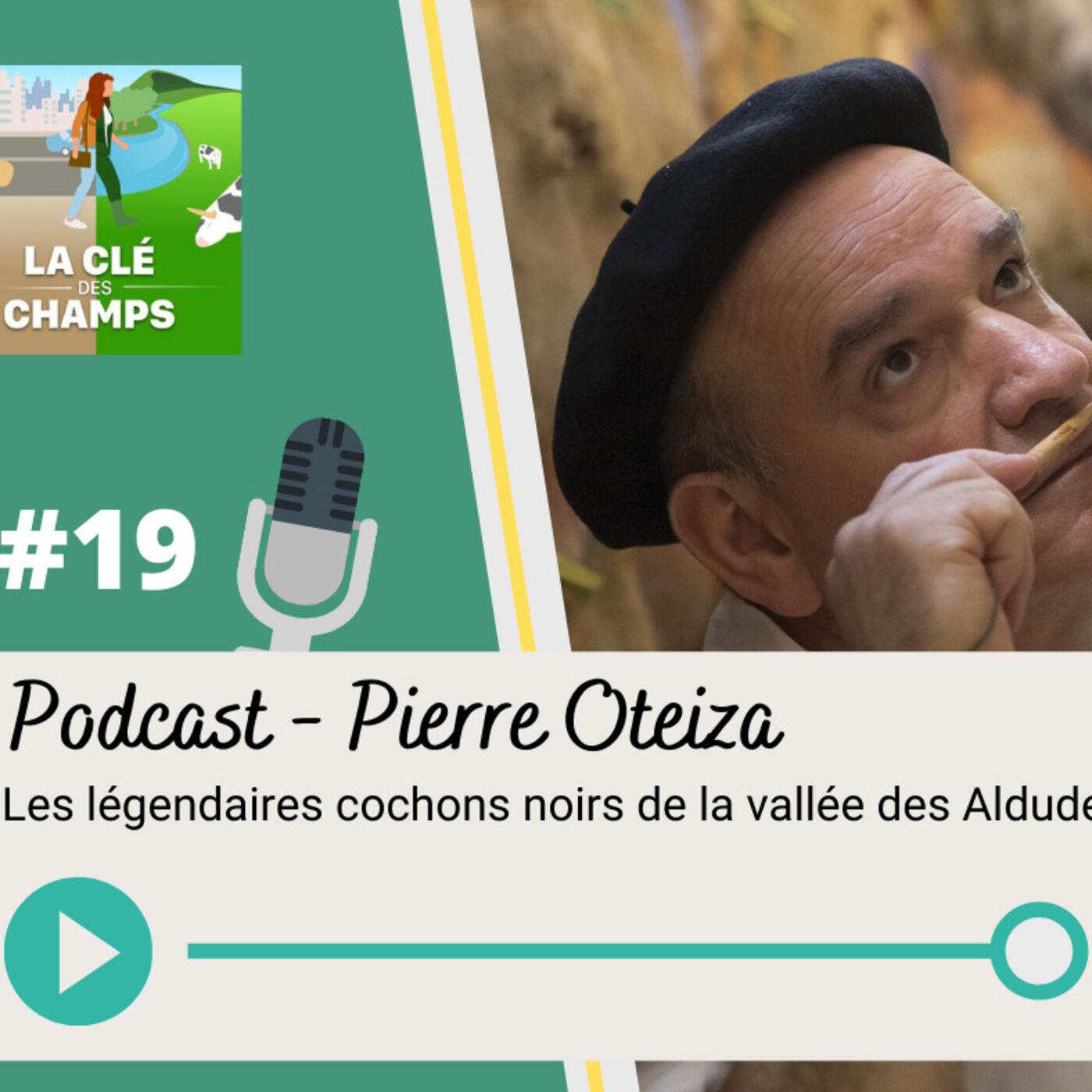 Pierre Oteiza – Les légendaires cochons noirs de la vallée des Aldudes