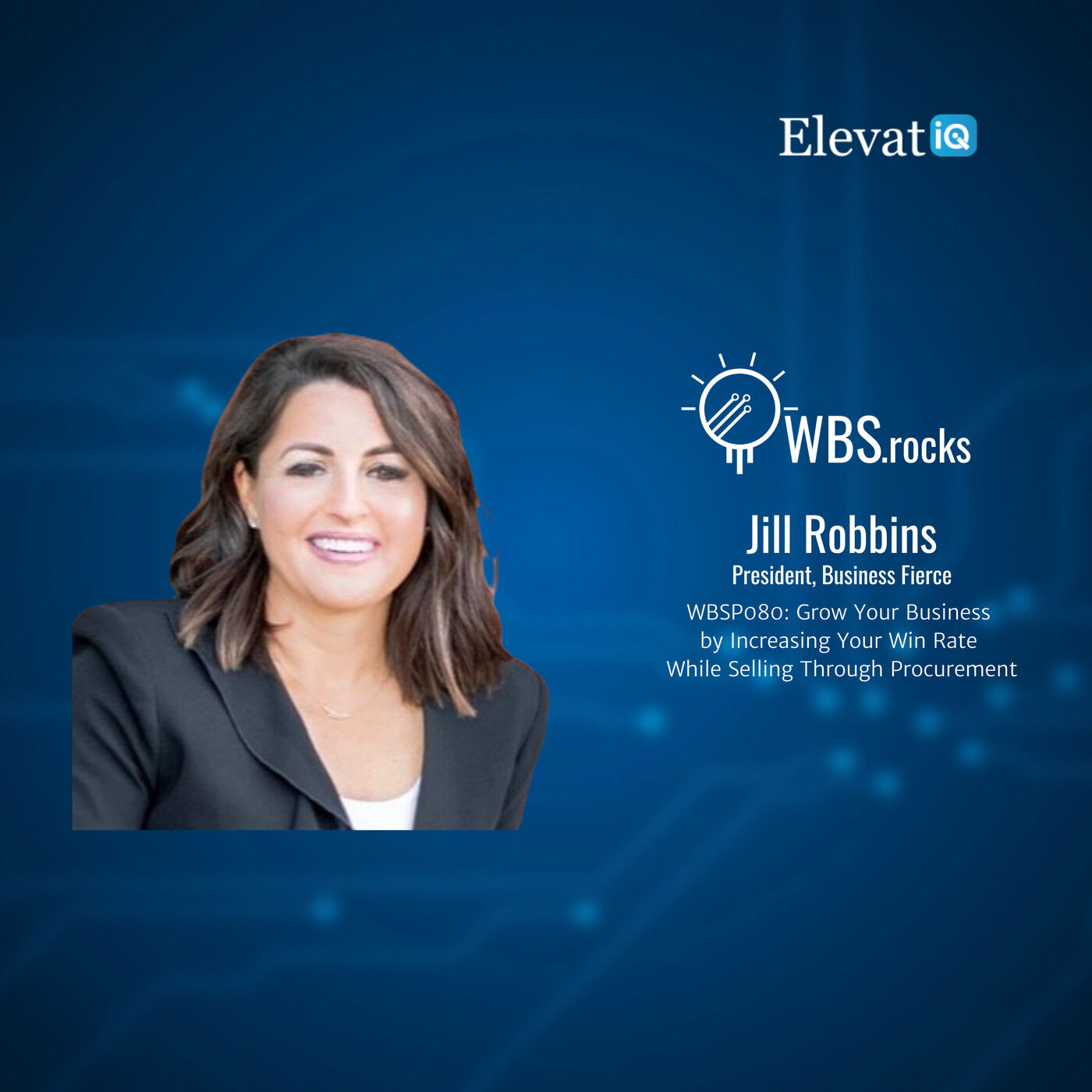 WBSP080: Grow Your Business by Increasing Your Win Rate While Selling Through Procurement w/ Jill Robbins