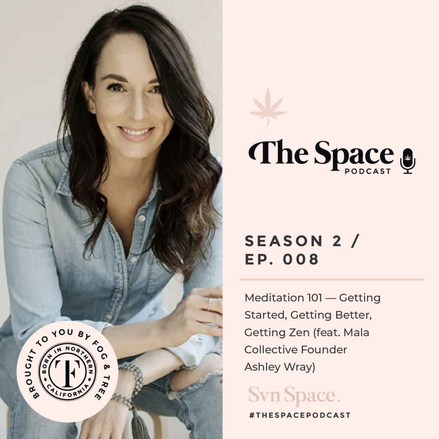 THE Space #008: Meditation 101 — Getting Started, Getting Better, Getting Zen (feat. Mala Collective Founder Ashley Wray)