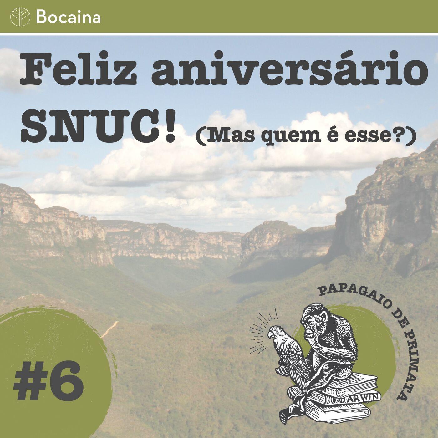 #6 - Feliz aniversário SNUC! (Mas quem é esse mesmo?)
