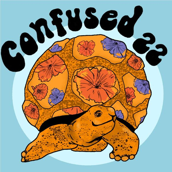 The Confused 22 Podcast Podcast Artwork Image