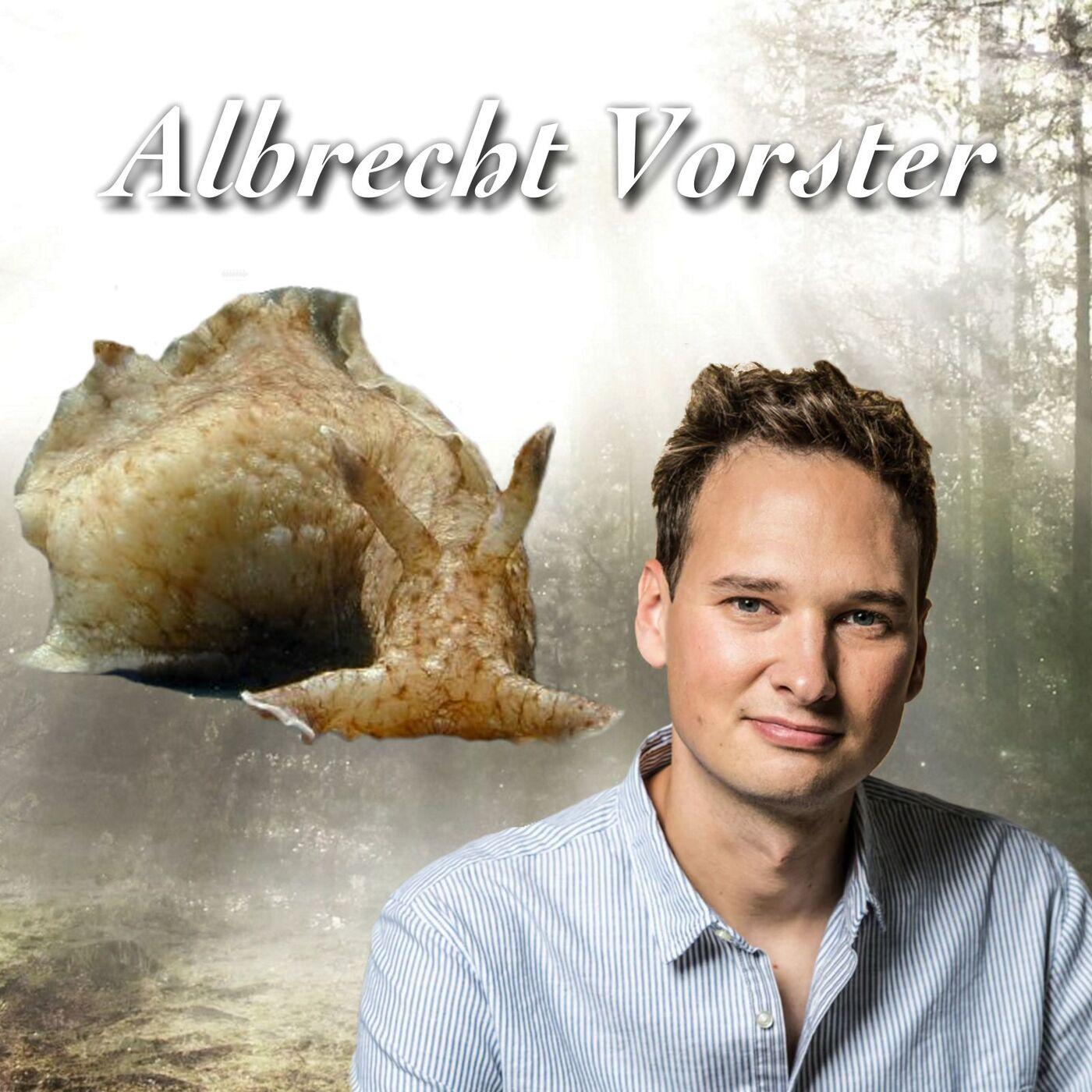 Schlafende Schnecken - Albrecht Vorster