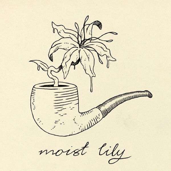 Moist Lily Podcast Artwork Image