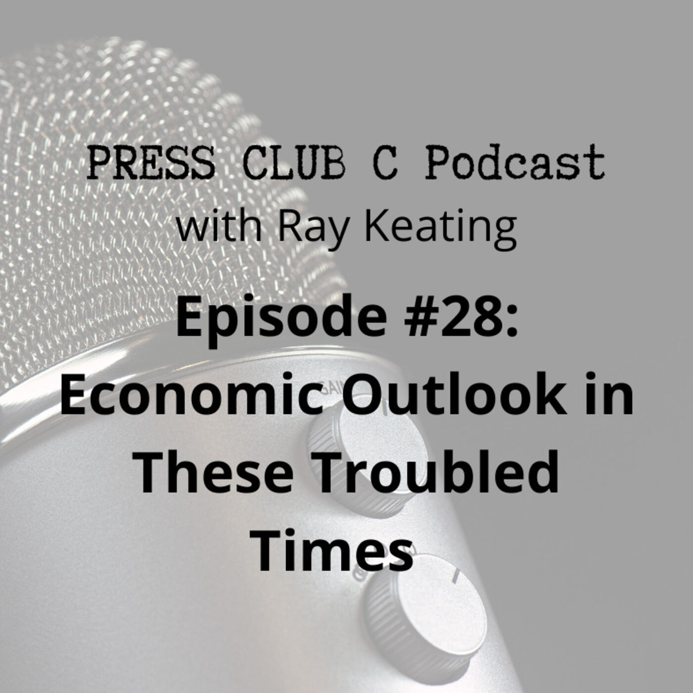 Episode #28: Economic Outlook in These Troubled Times