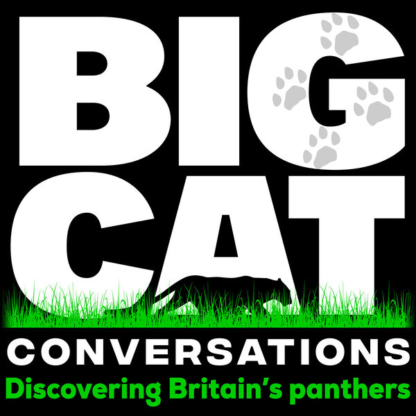 Big Cat Conversations Podcast Artwork Image