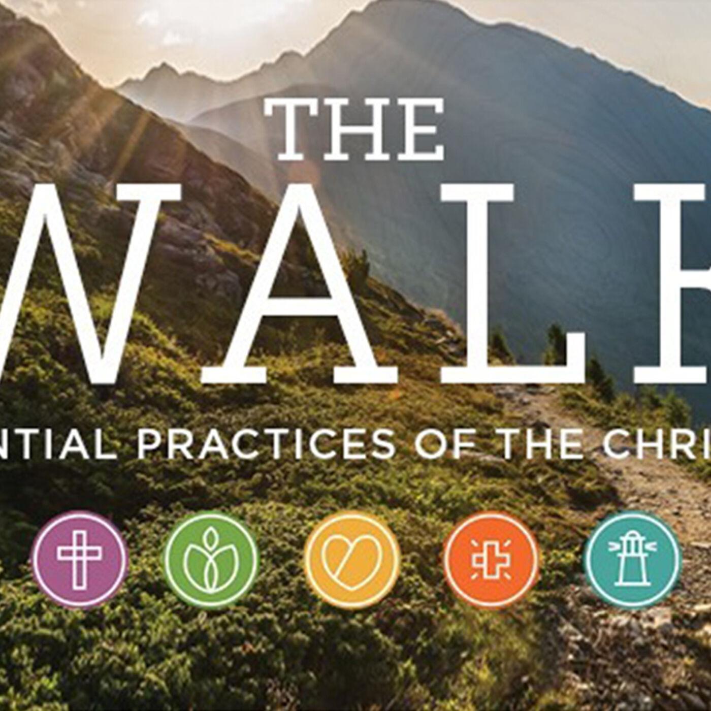 """The Walk"" - Week #4 - Eric F. Koehler"