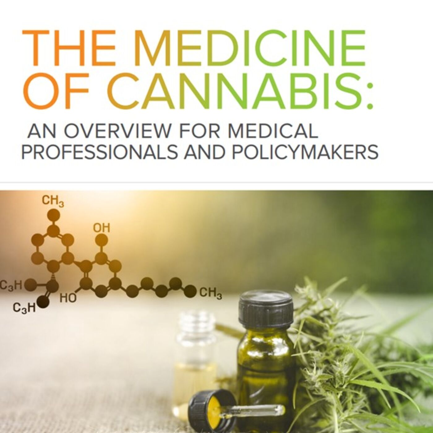 The Medicine of Cannabis: An Overview for Medical Professionals and Policymakers, with Dr. Lynn Parodneck (S2, E21))