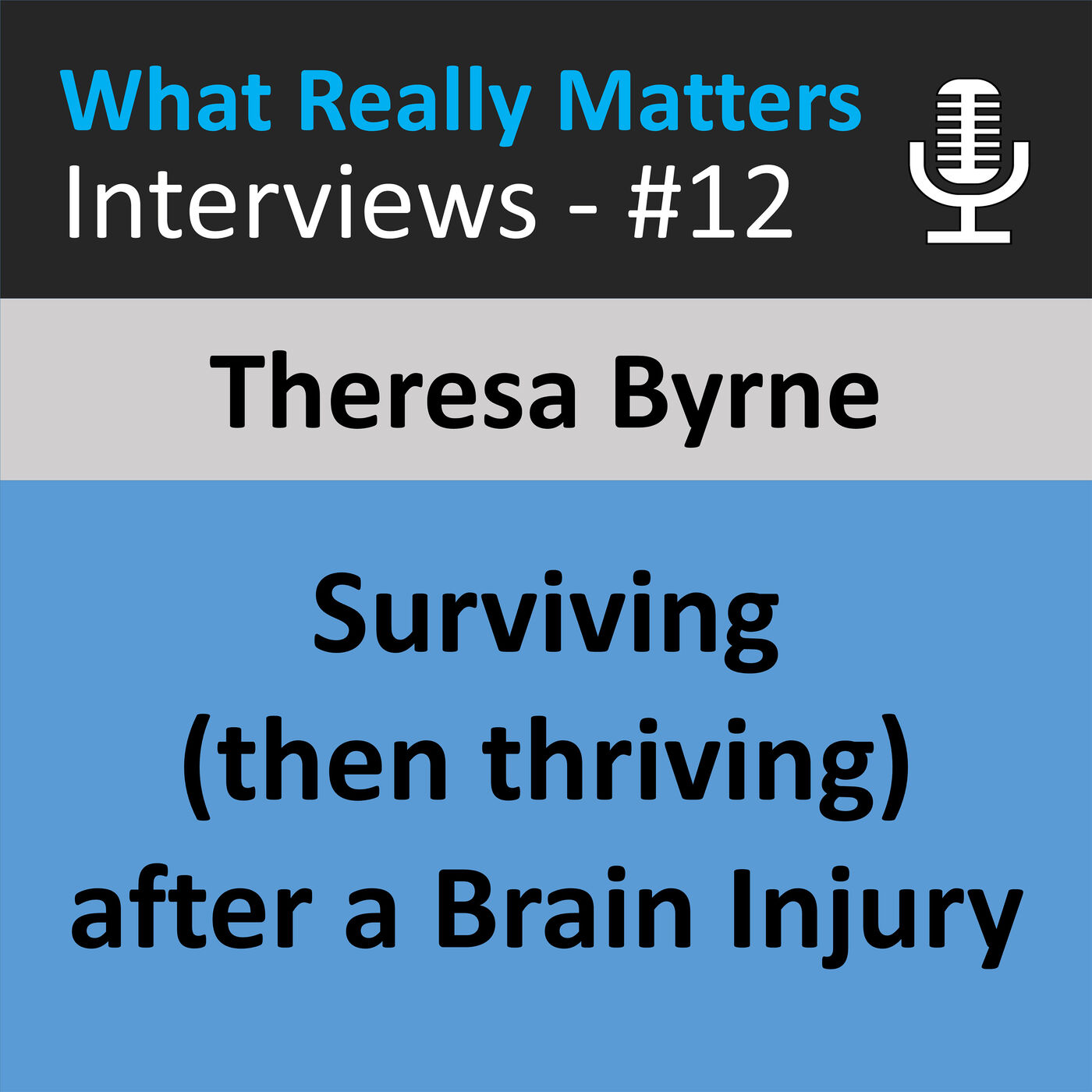 WRMI 012: Surviving (then Thriving) after a Traumatic Brain Injury // Interview with Theresa Byrne