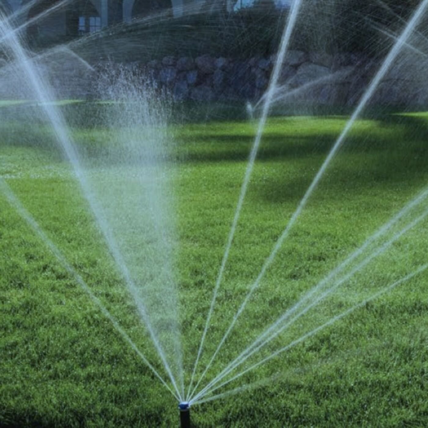 Smart Irrigation Equipment. Planting Tips for Low Water Plants