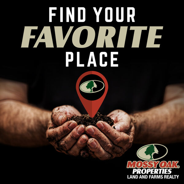 Find Your Favorite Place Podcast Artwork Image