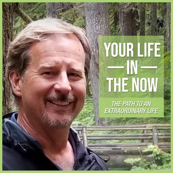 Your Life in the Now Podcast Artwork Image