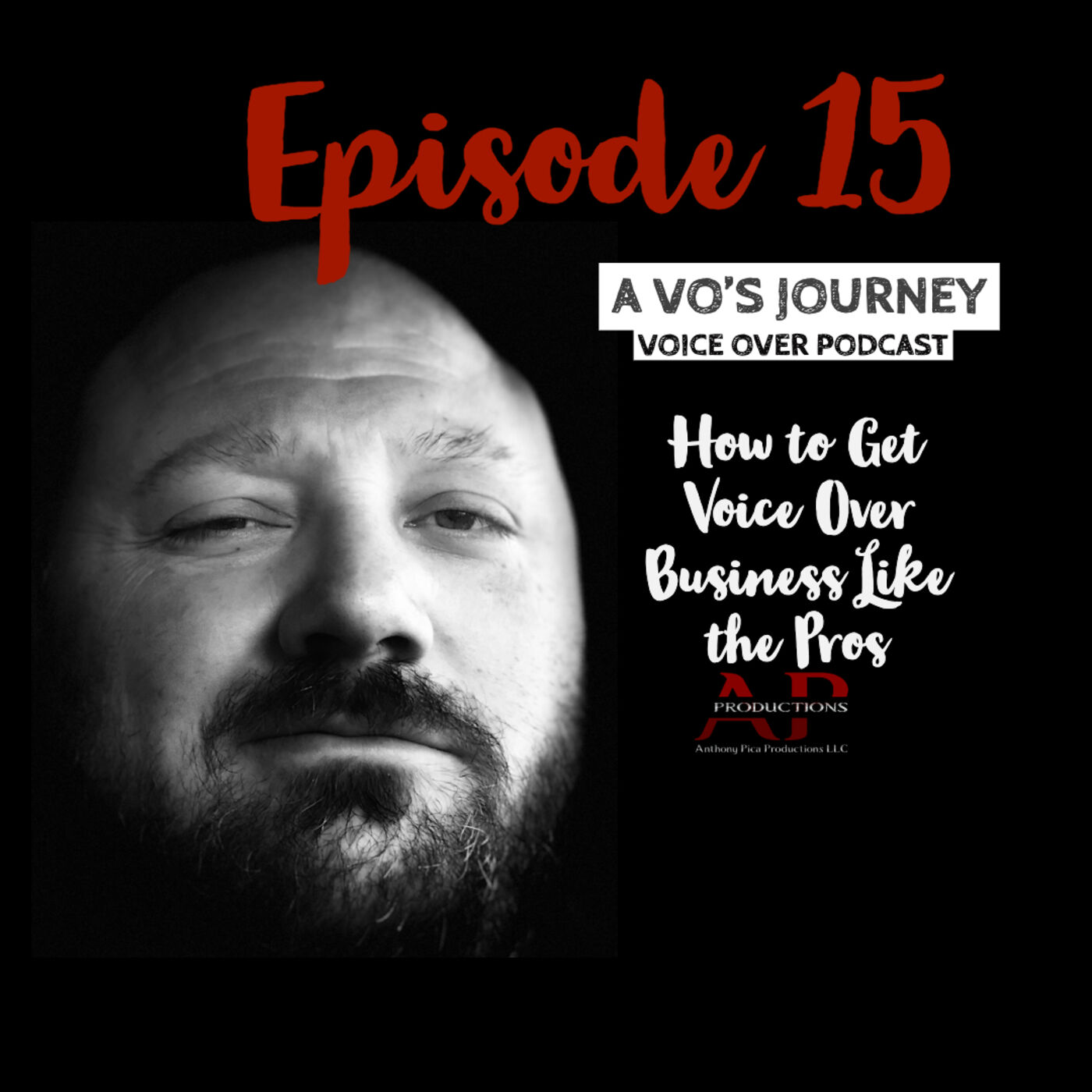 Ep. 15: How to Get Voice Over Business Like the Pros