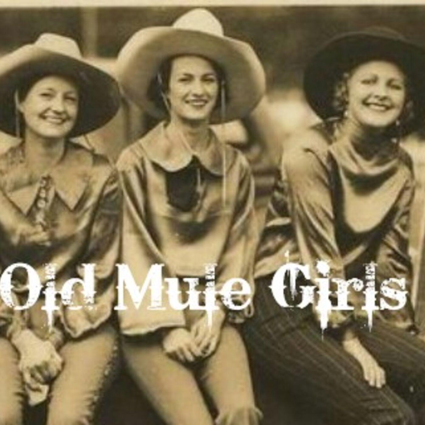 MULE TALK! GUEST: BETH NEWMASTER - Founder of Mule Girls, Old Mule Girls
