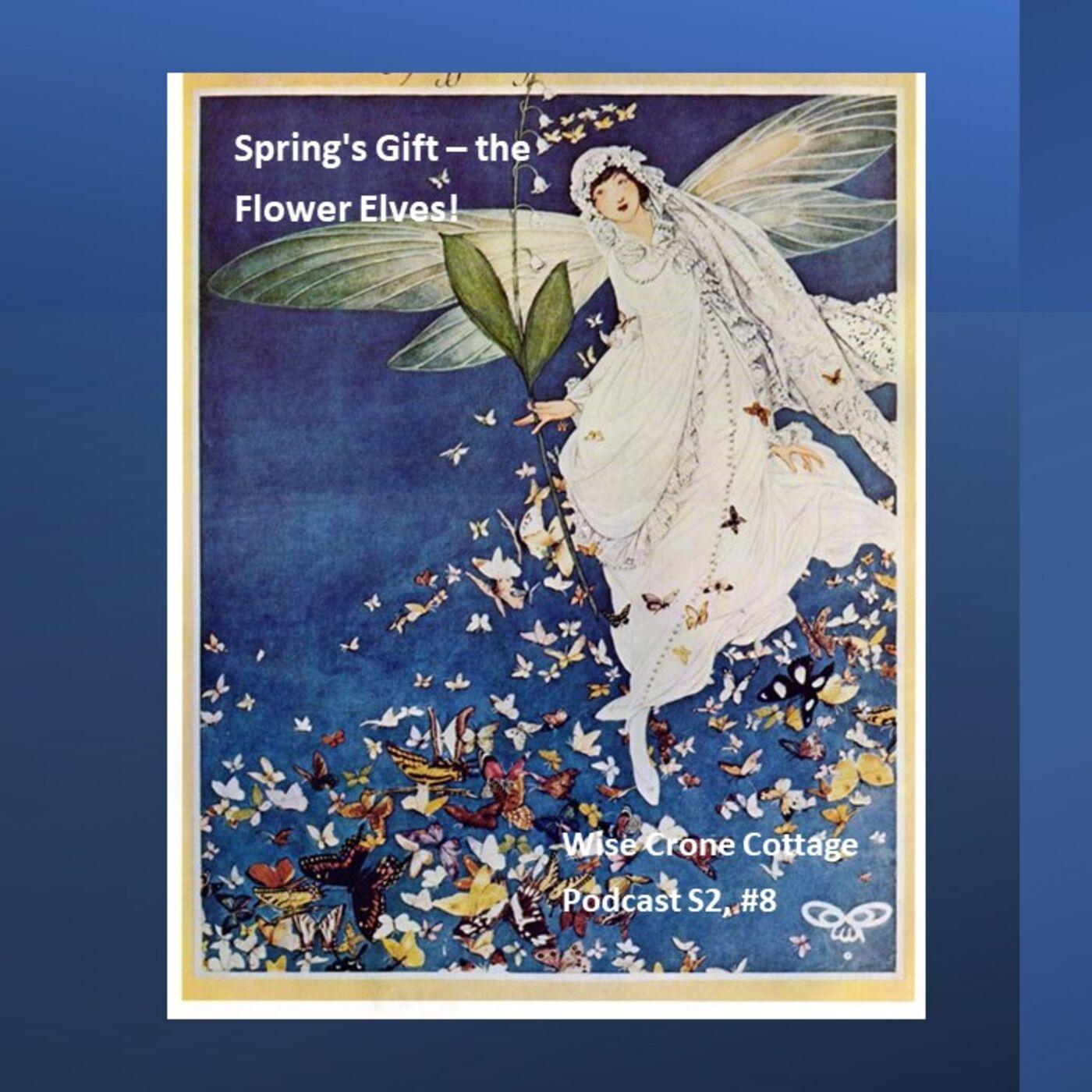 Spring's Gift - the Flower-Elves! (S2, #8)