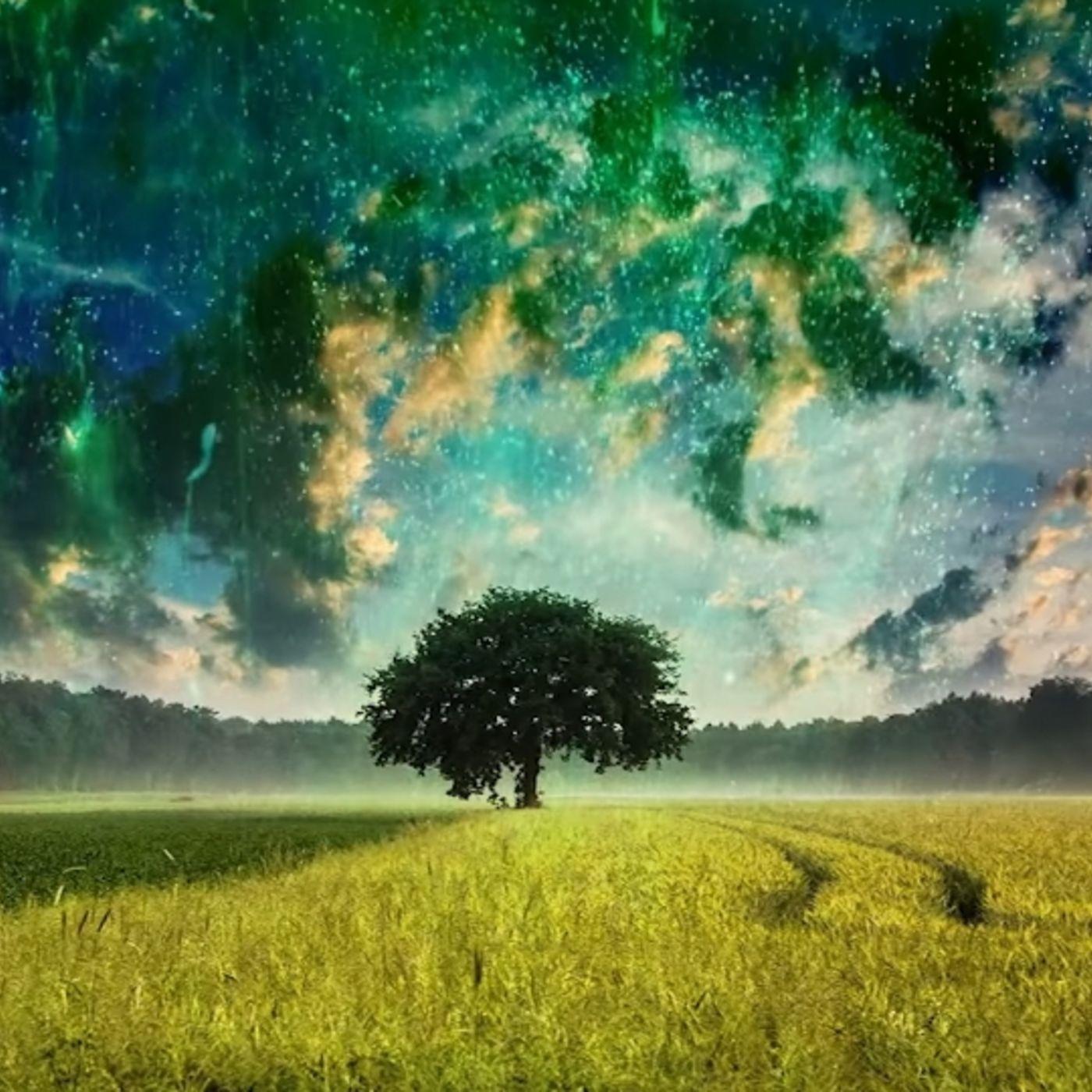 Earth Energy Illumination Spirit Talk