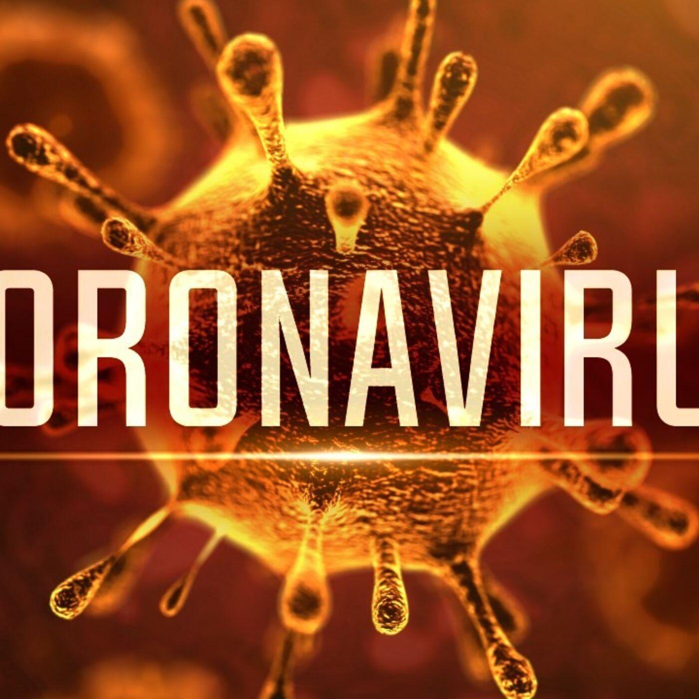 CoronaVirus: The Impact & Implication On The Supply Chain