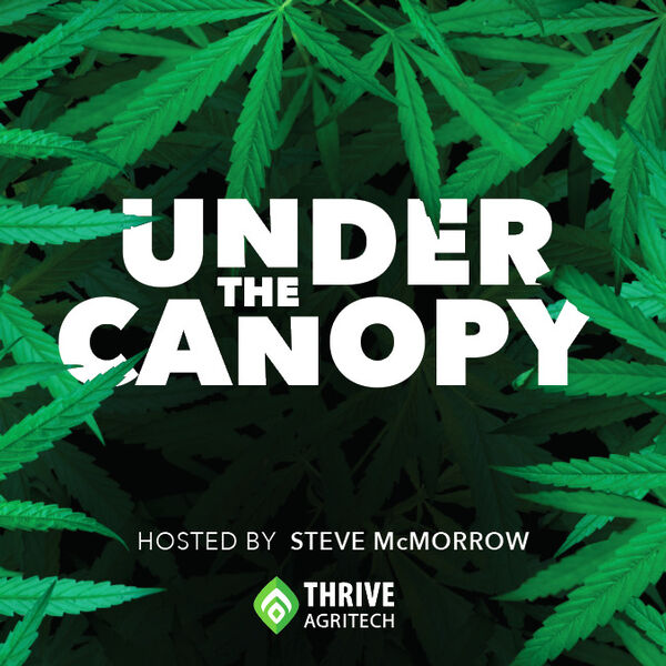 Under The Canopy Podcast Artwork Image