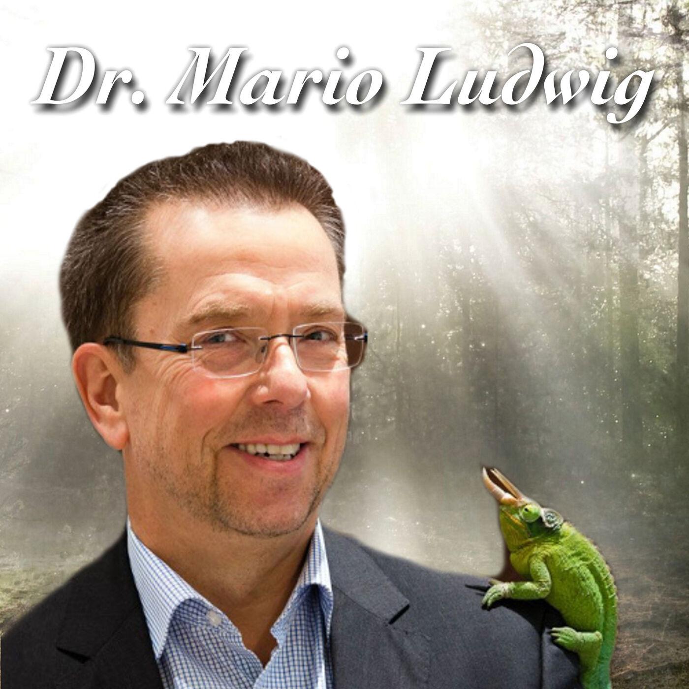 Eisbären im Knast - Dr. Mario Ludwig