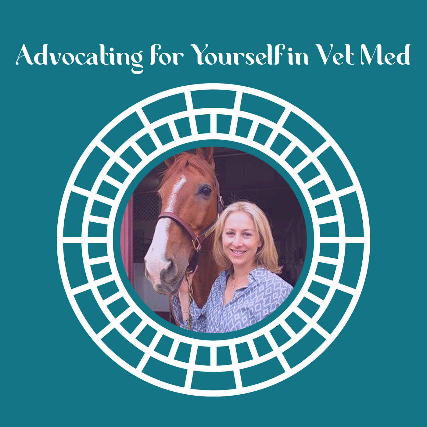 Advocating for Yourself In Vet Med with Dr. Kelly Zeytoonian