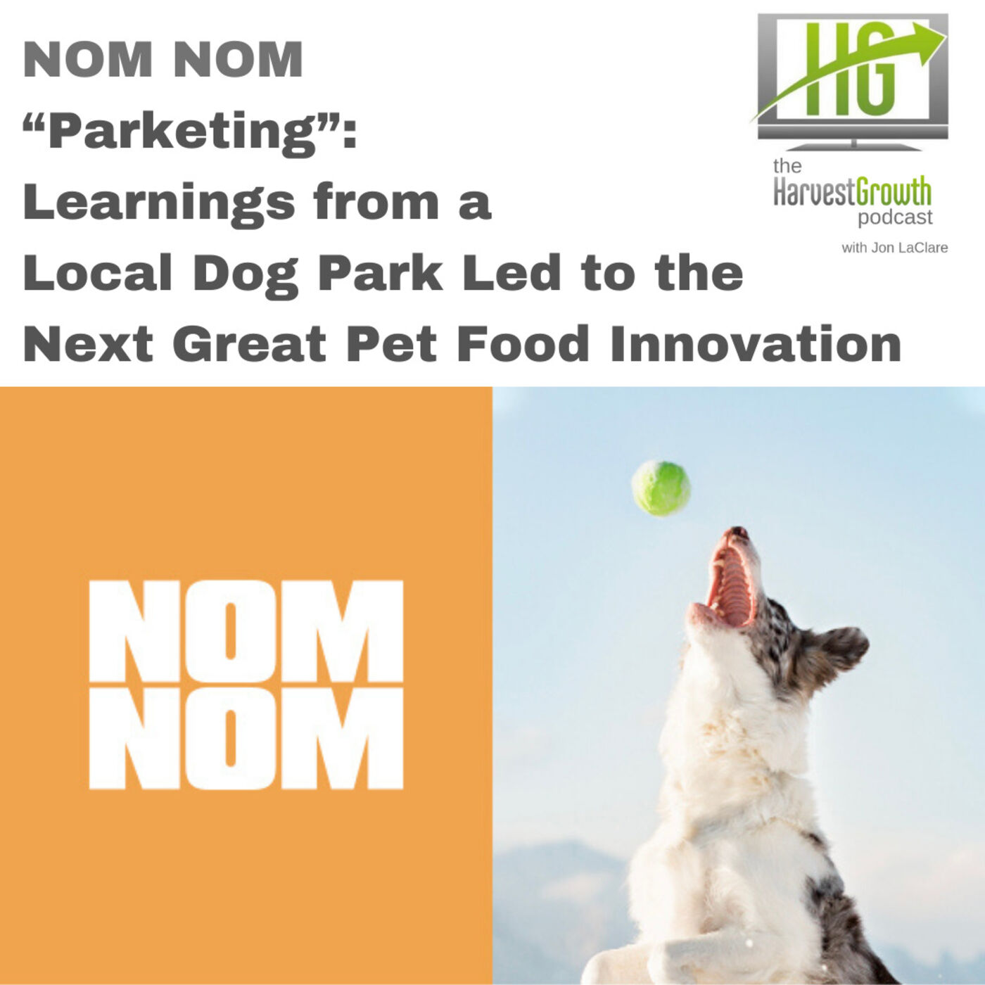 """""""Parketing"""": Learnings from a Local Dog Park Led to the Next Great Pet Food Innovation"""