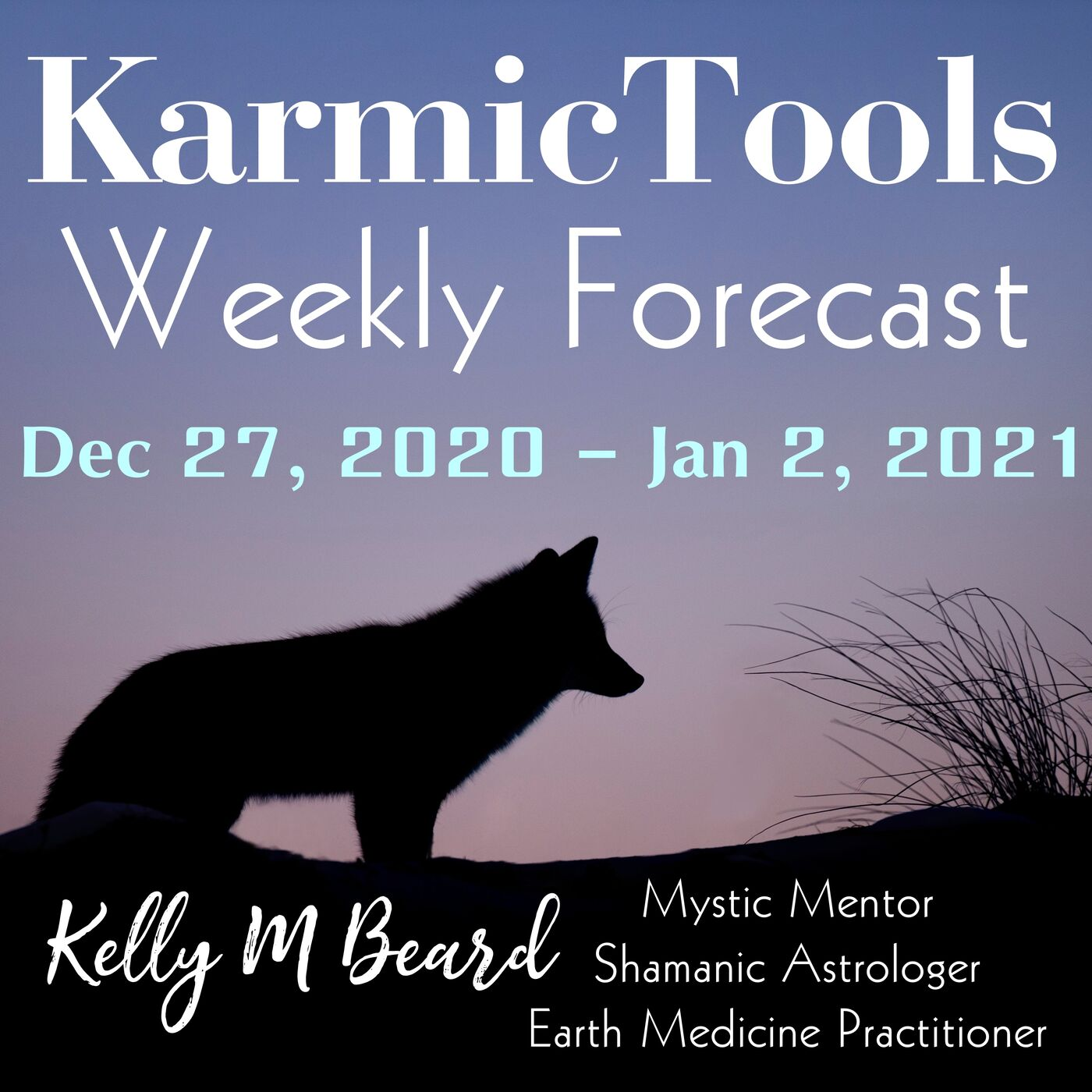 Dec 27 - Jan 2, 2021 KarmicTools Weekly Forecast