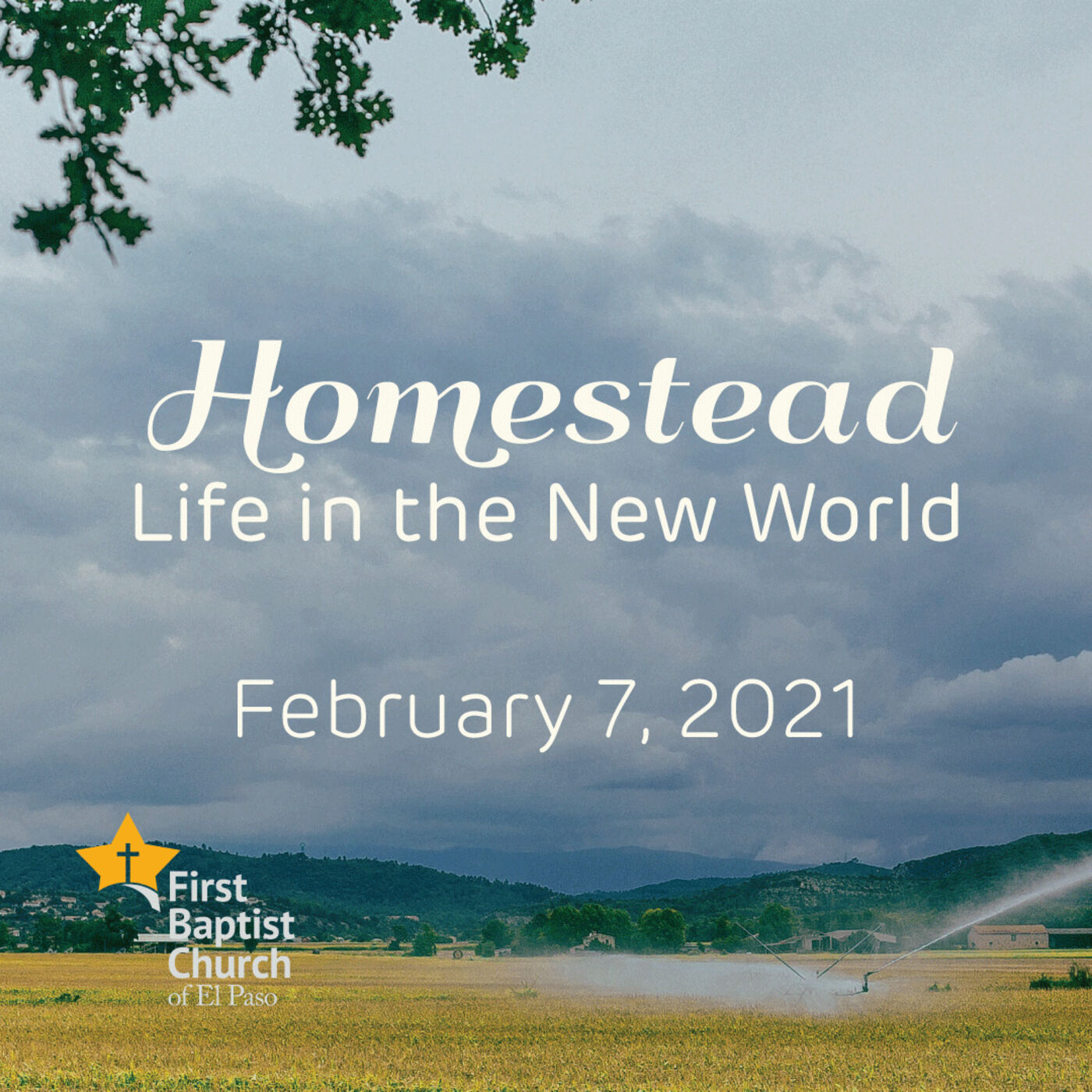 Homestead: Life in the New World