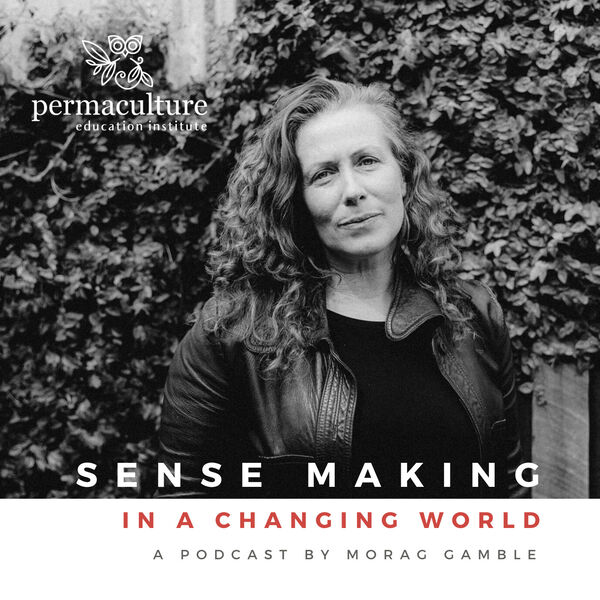 Sense-making in a Changing World Podcast Artwork Image