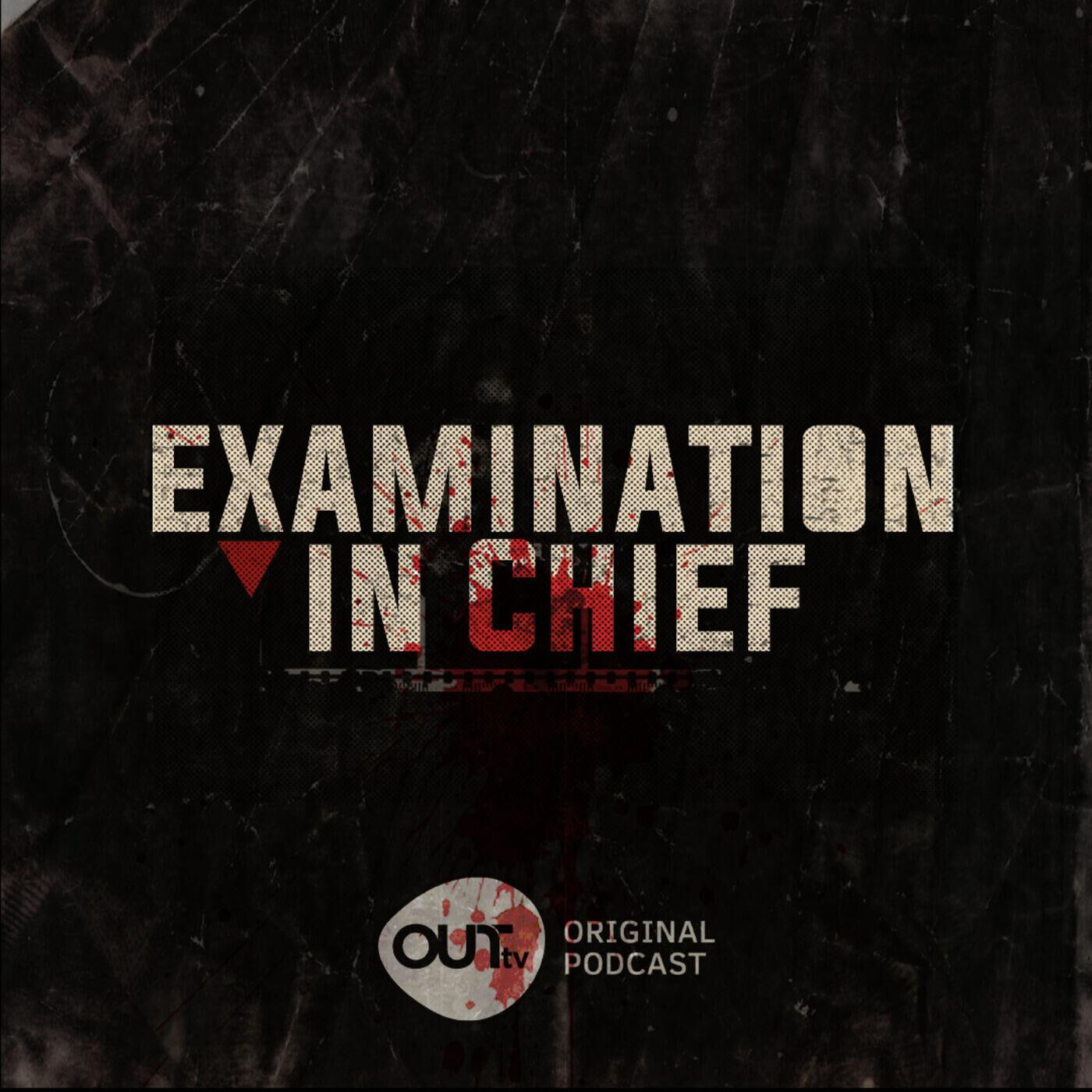 Examination in Chief - The Internet: Hero or Villain?