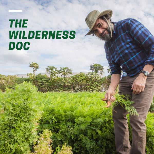 The Wilderness Doc Podcast Artwork Image