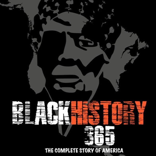 Black History Matters 365 Podcast Artwork Image
