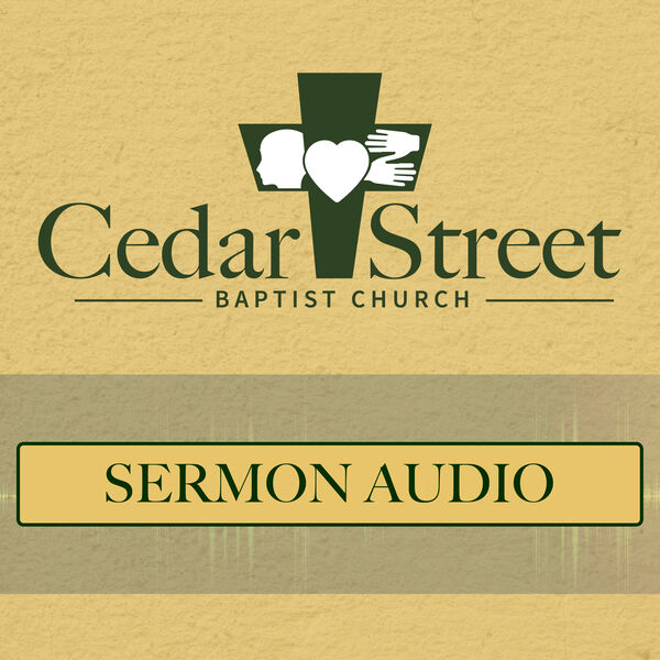Cedar Street Baptist Church (Metter, GA) Podcast Artwork Image