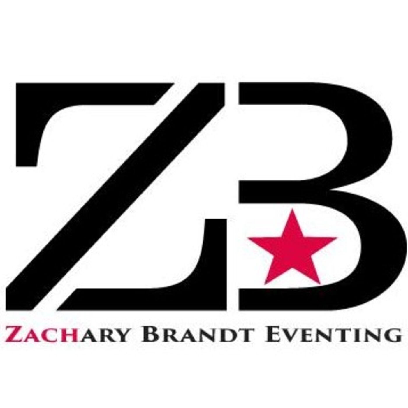 #132 Zachary Brandt Interview