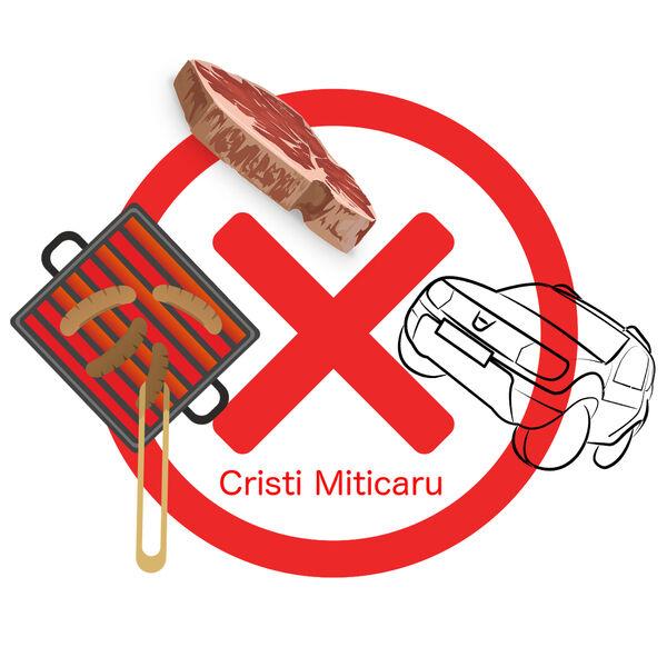 Cristi Miticaru's Podcast Podcast Artwork Image