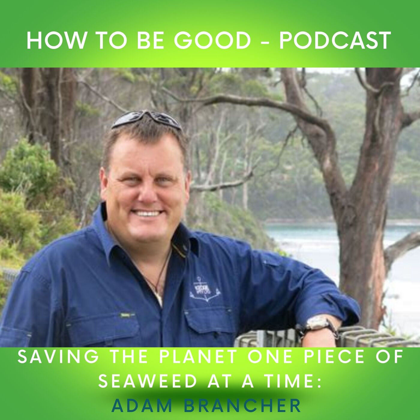 Saving the planet one piece of seaweed at a time: Adam Brancher from Southern Ocean Carbon Company talks sequestration