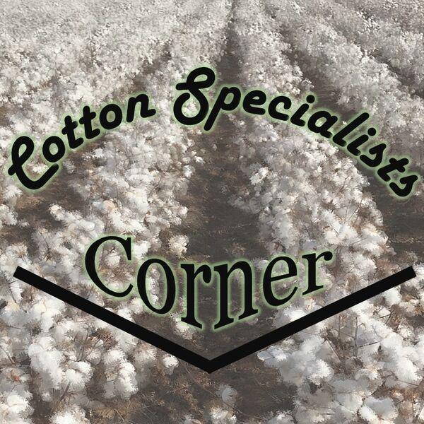 Cotton Specialists Corner Podcast Artwork Image