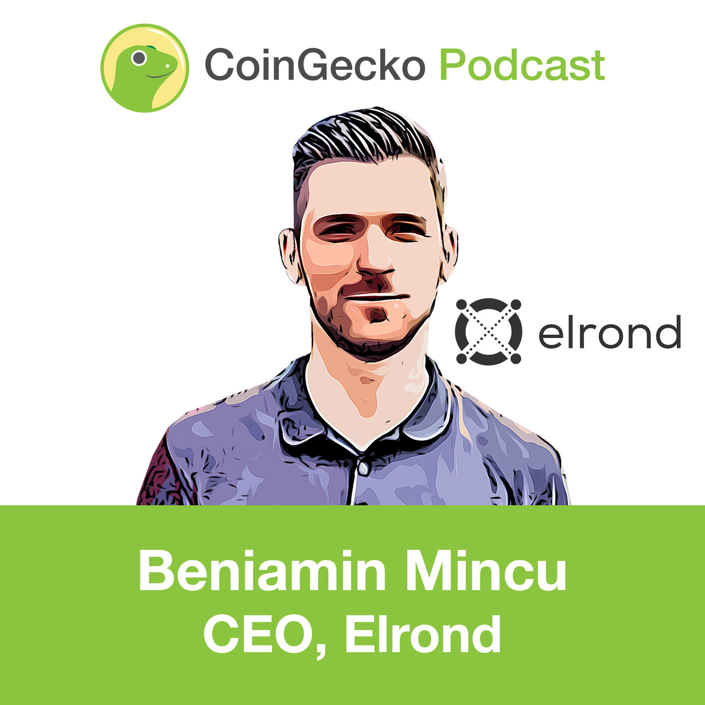 Building a Highly Scalable Blockchain with Beniamin Mincu, CEO of Elrond - Ep. 11
