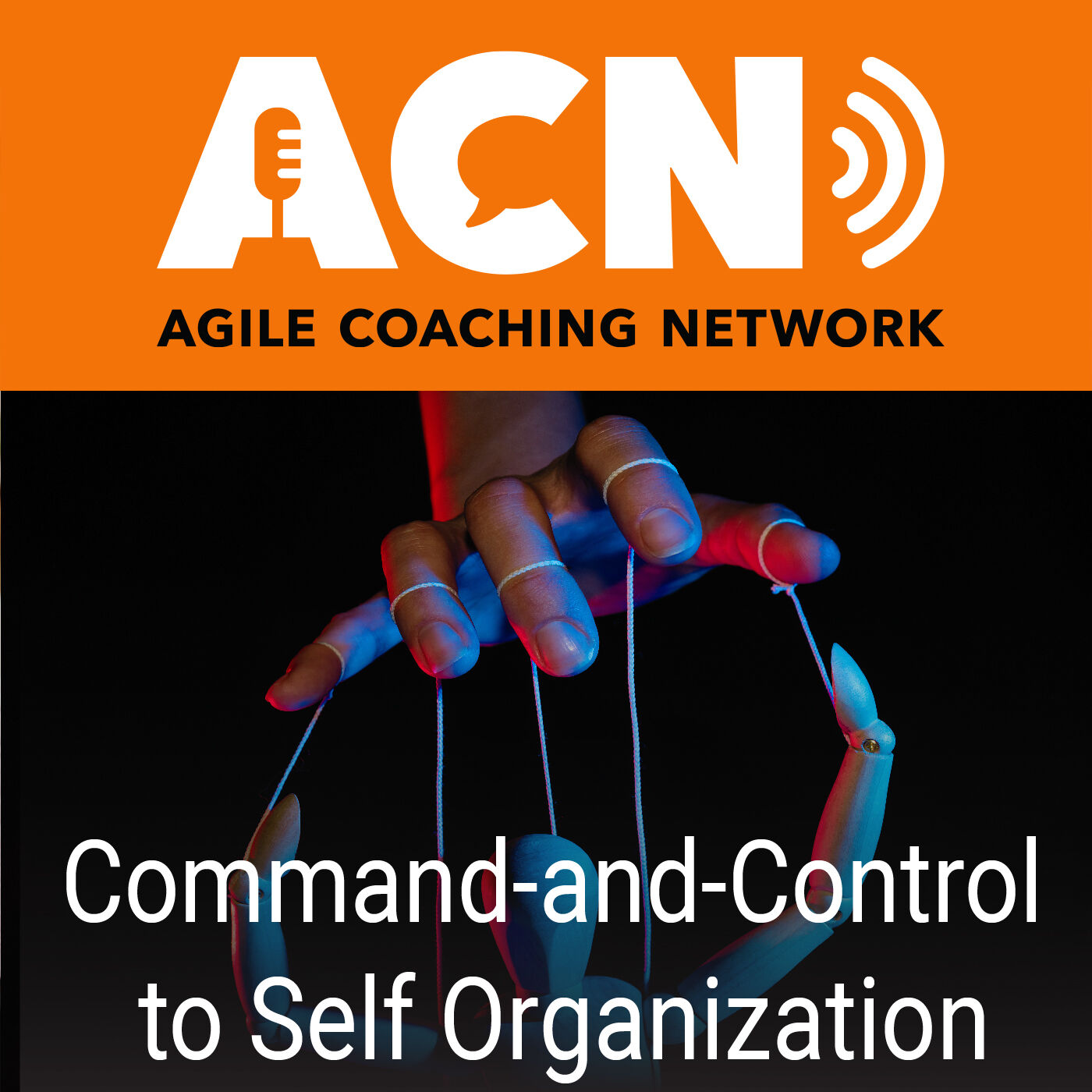 From command and control to self-organization, and why use Agile project management.