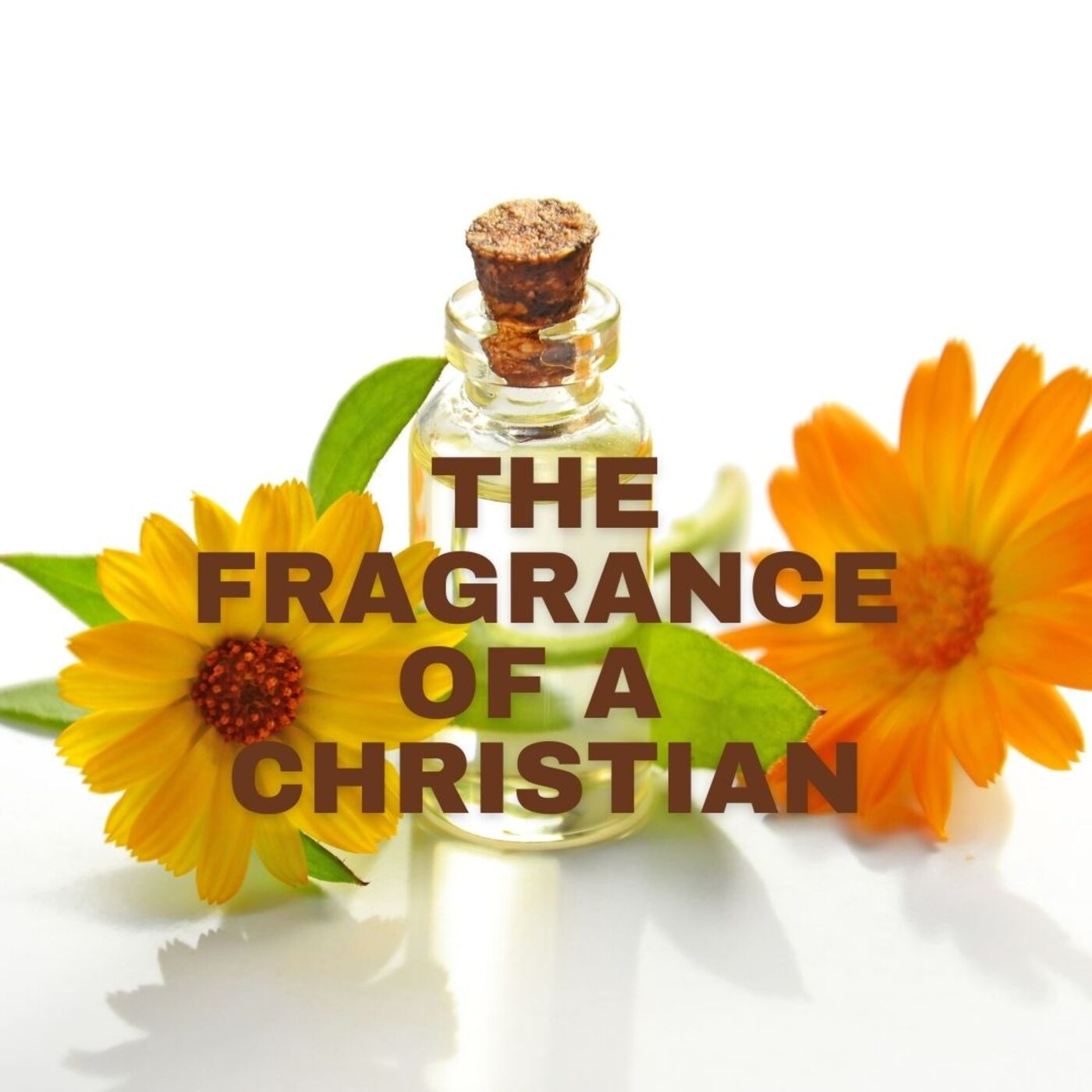 The Fragrance of A Christian