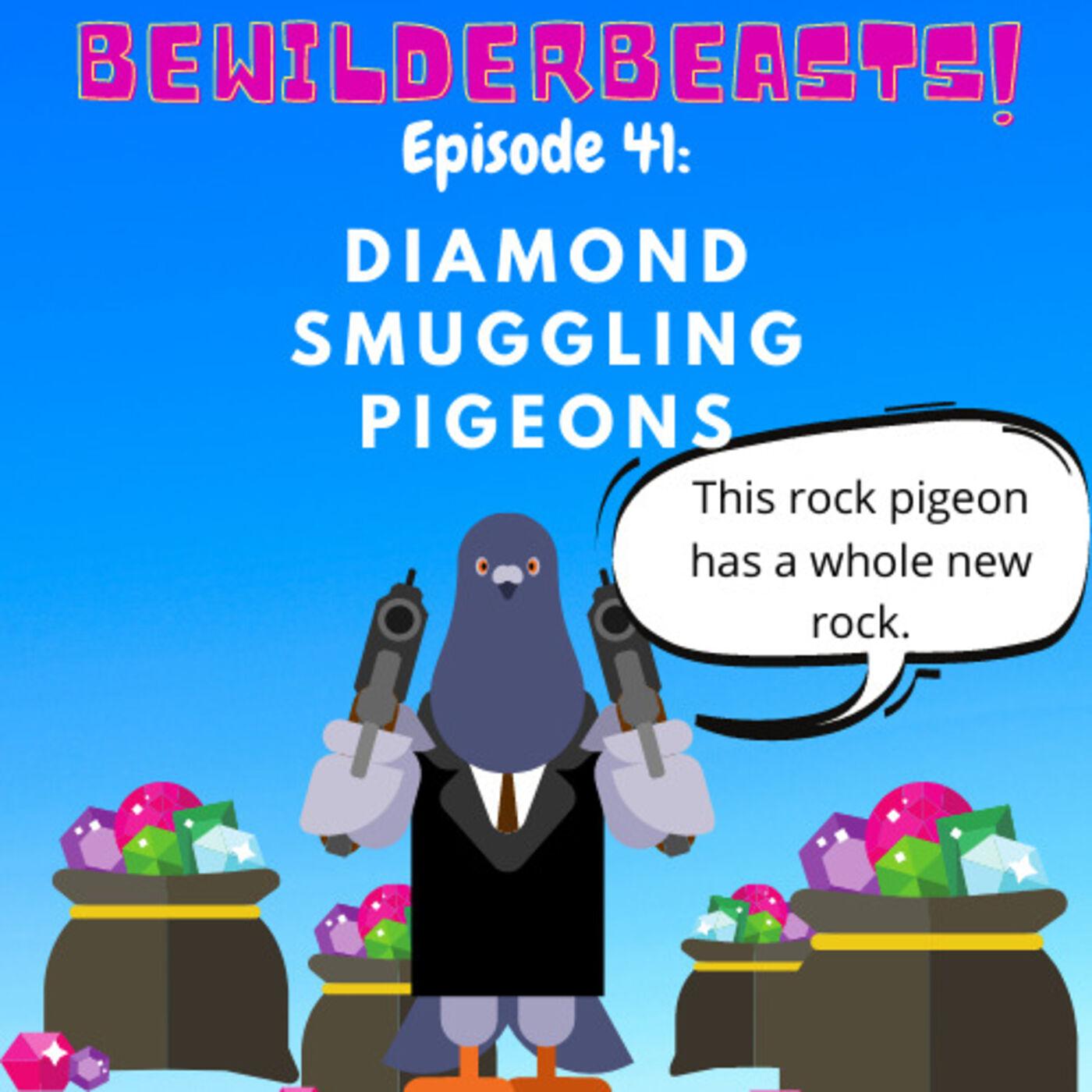 Ep 41: Diamond Smuggling Pigeons