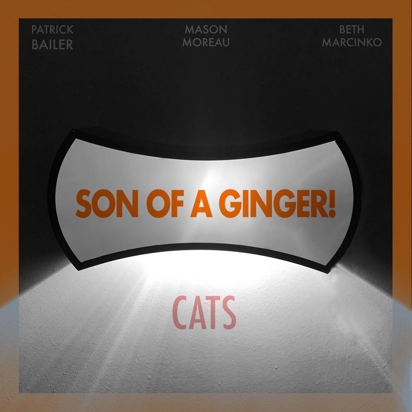 Cats (Dir. by Tom Hooper)